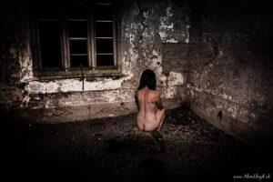 Alan Lloyd Photography In Torbay