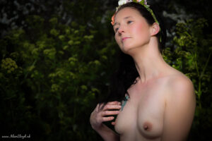 Free Natural Portraits In Torbay